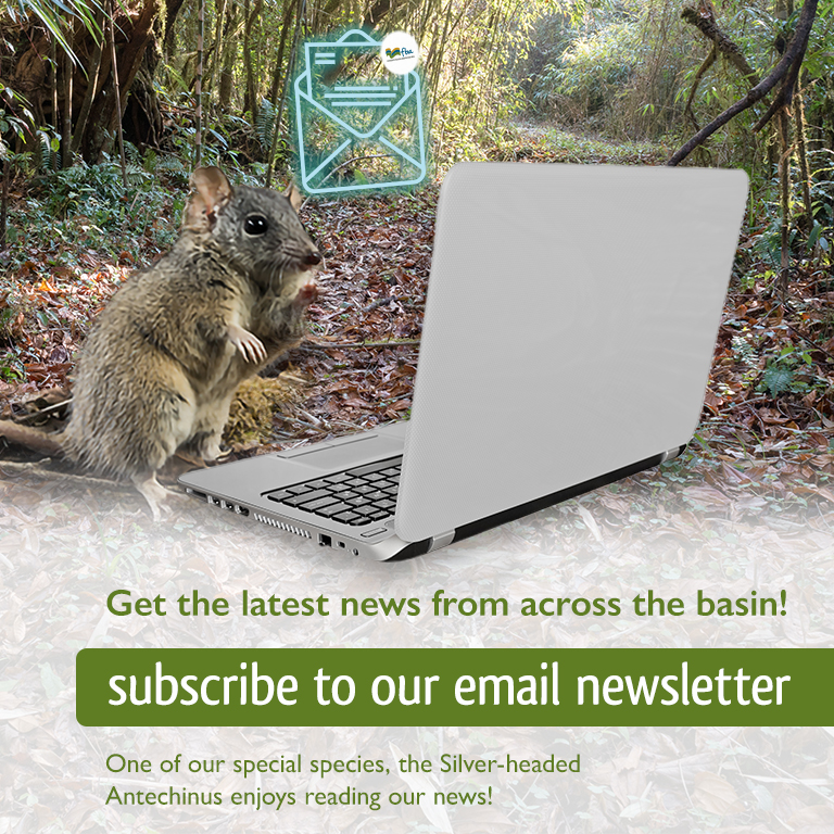 FBA092 Subscribe to newsletter_Mobile Web Banner