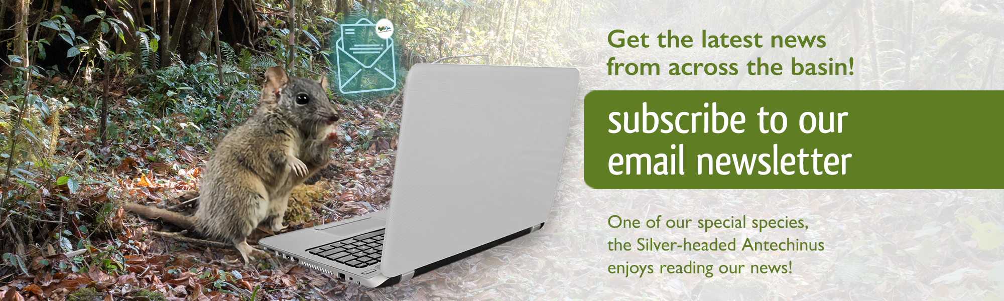 FBA092 Subscribe to newsletter_Web Banner