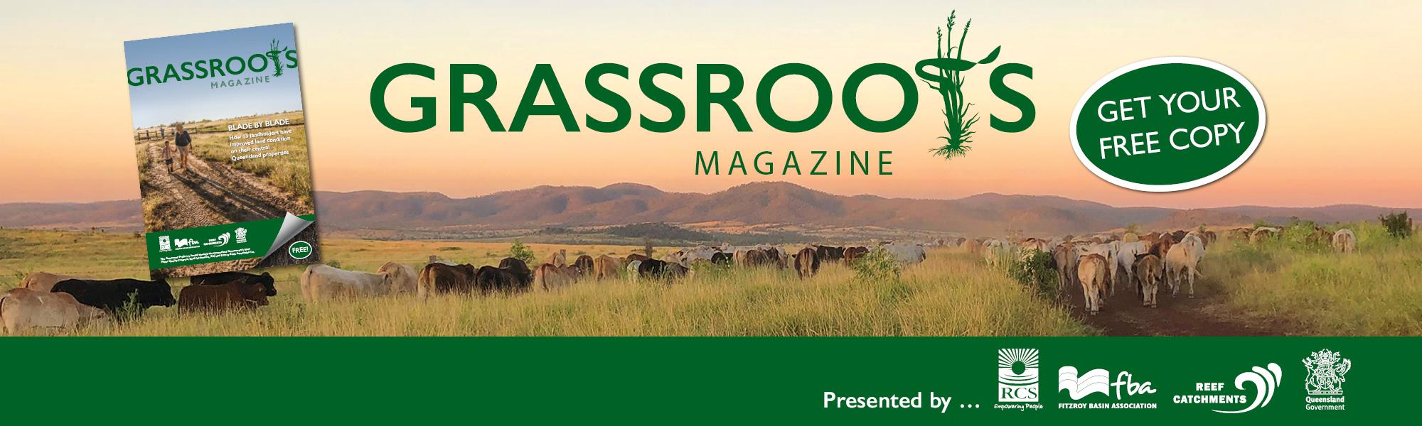 Grassroots-Desktop
