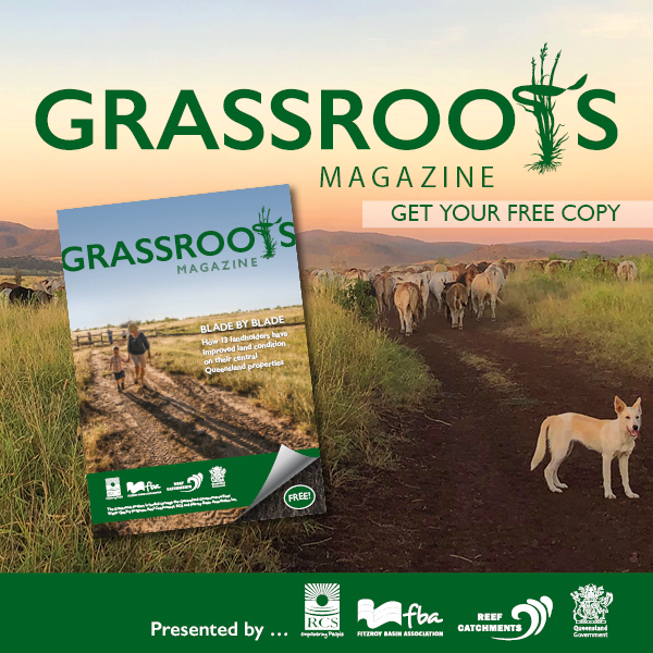 Grassroots-Mobile