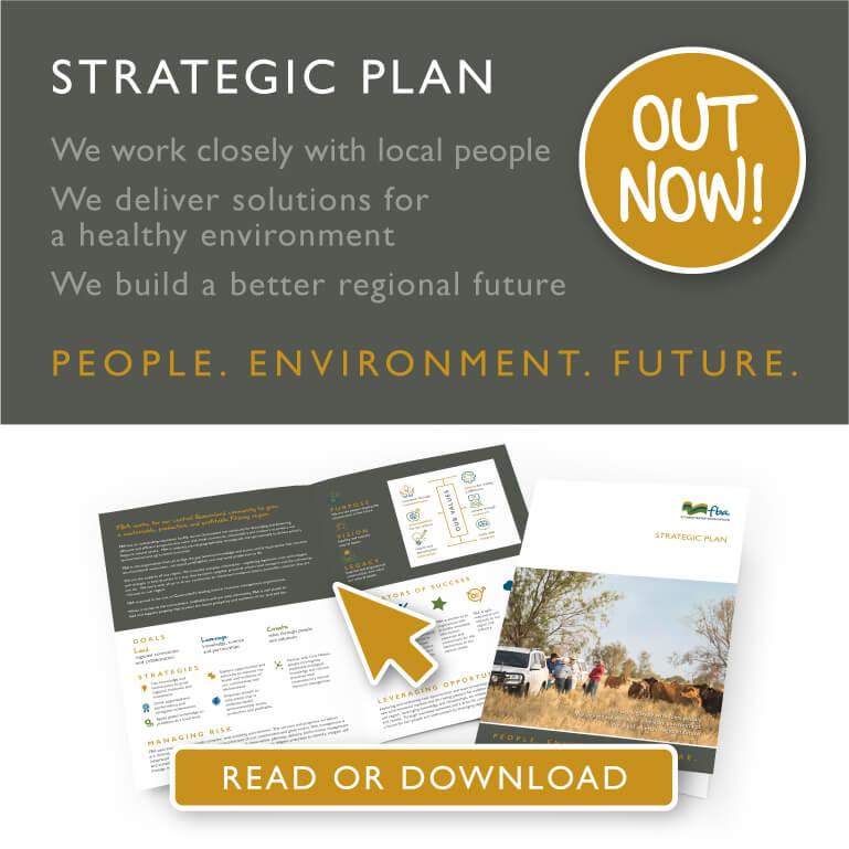 Strategic Plan Mobile Web Banner