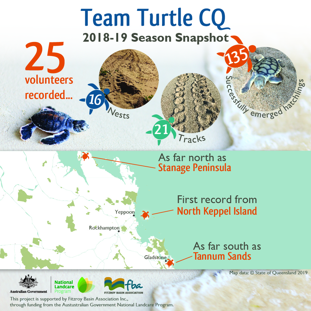 team-turtle-snapshot-mobile-website-final