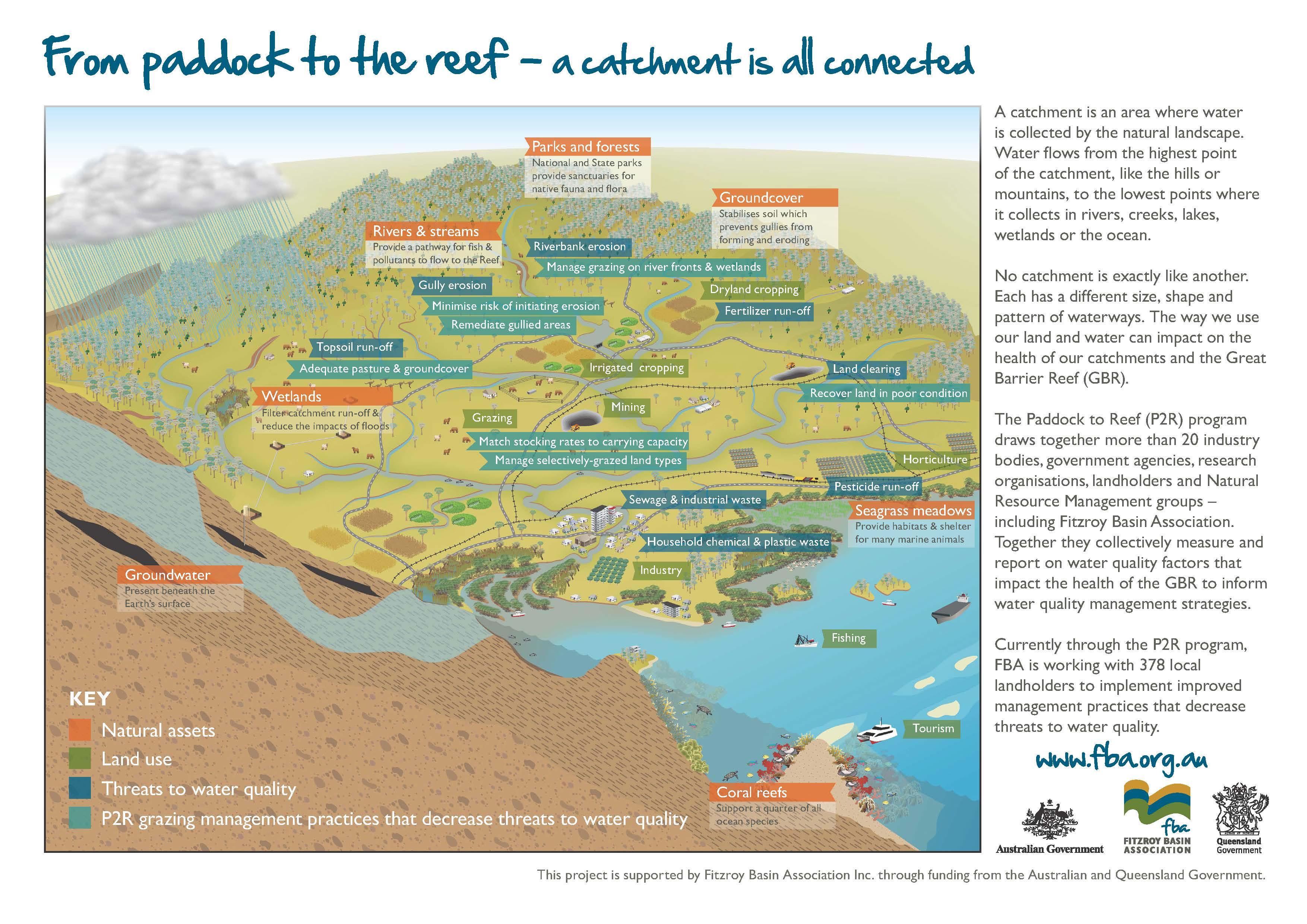 Geology, soils and ecosystems   Fitzroy Basin Association
